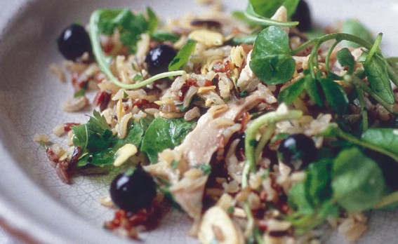 chicken, wild rice and blueberry salad with parsley on a white ceramic plate.
