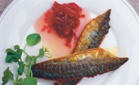 Mackerel with spiced rhubarb relish with water cress on a white plate